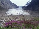 Kangerluarsuat Fjord glacier