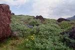 Nuuk- Illulisat Zdjęcia z wyprawy 2013 s/y Nashachata