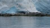 Zdjecia z wyprawy na południową półkule i Antarktydę.